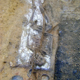 An Eastern Cemetery Roman 'chalk' burial. The religious beliefs behind this practice is as yet unknown, although interestingly the analyses show white powder is a marine chalk. © L - P : Archaeology.