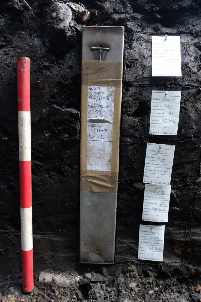 Monolith samples